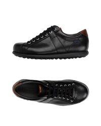 Camper Black Low-tops & Sneakers for men