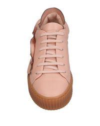 Pinko Pink Low Sneakers & Tennisschuhe