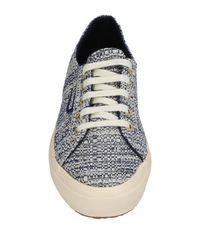 Superga Blue Low-tops & Sneakers