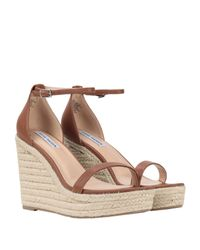 Espadrillas Steve Madden de color Brown