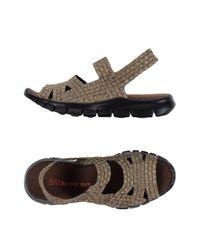 Bernie Mev Multicolor Sandals