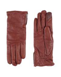 Royal Republiq Brown Gloves