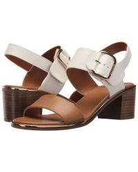 Tommy Hilfiger Brown Katz2 (burgundy) Women's Shoes