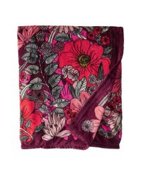 Vera Bradley Multicolor Throw Blanket