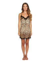 Dolce & Gabbana - Natural Stretch Silk Lace Cheeta - Lyst