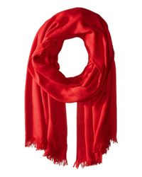 Calvin Klein - Red Ck Logo Pashmina - Lyst