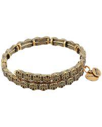 ALEX AND ANI | Metallic Path Of Life Wrap Bracelet | Lyst