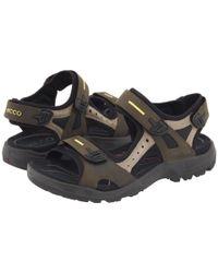 Ecco Brown Yucatan Sandal (tarmac/moon Rock) Men's Shoes for men