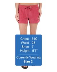 Carve Designs - Pink Willow Shorts - Lyst