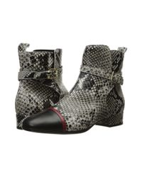 Just Cavalli | Multicolor Python Printed High Heel Ankle Bootie | Lyst