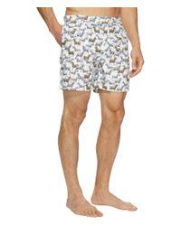 Original Penguin Zebra Fixed Volley (bright White) Swimwear for men