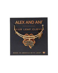 ALEX AND ANI | Metallic Path Of Symbols-four Leaf Clover Iv Bangle | Lyst