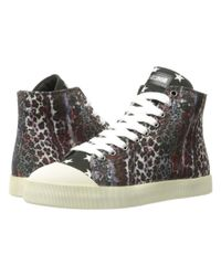 Just Cavalli Multicolor Mixed Printed Canvas High Tops