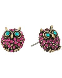 Betsey Johnson - Purple And Gold Owl Stud Earrings - Lyst