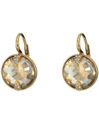 Swarovski Multicolor Globe Pierced Earrings (gold/brown) Earring