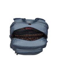 Vera Bradley Blue Iconic Campus Backpack (classic Black) Backpack Bags