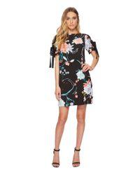 Adrianna Papell Zen Blossom Shift Dress (black Multi) Women's Dress