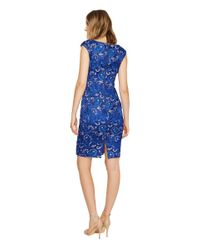 Adrianna Papell Sequin Lace Cap Sleeve Sheath Dress (blue Sapphire) Dress