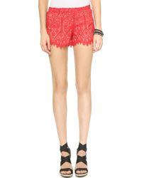 David Lerner - Lace Shorts - White - Lyst