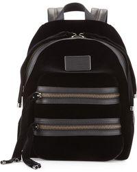 Marc By Marc Jacobs Domo Biker Velvet Backpack - Black