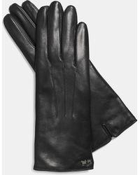 COACH Leather Tech Glove - Black