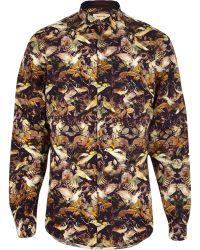 River Island Purple Hummingbird Print Long Sleeve Shirt - Lyst