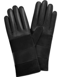 Mulberry Bee Glove - Black