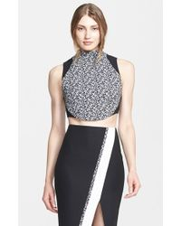 Elizabeth And James 'Malorie' Crop Top - Lyst