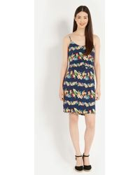 Oasis Tropical Stripe Camisole Dress - Lyst