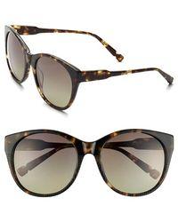 Jason Wu 'petra' 56mm Sunglasses - Dark Tortoise - Brown