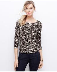 Ann Taylor Tall Leopard Print Mesh Stitch Sweater - Lyst