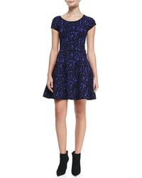 Milly Velvet-lace A-line Dress - Lyst