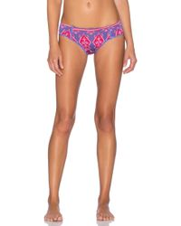 Spell & The Gypsy Collective - Sunset Cactus Bloomers - Lyst