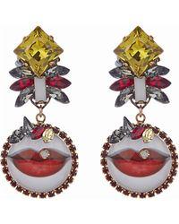 Erickson Beamon Say Cheese Earrings - Multicolour