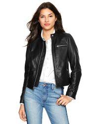 Gap Leather Moto Jacket - Black