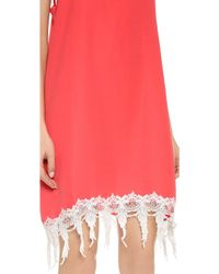 Karen Zambos Jocelyn Dress - Watermelon - Red