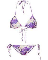 Isolda Printed Triangle Bikini - Purple