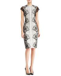 Lela Rose Placed-lace Sheath Dress - Lyst