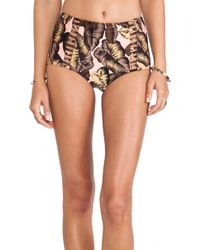 Seafolly Honolua High Waisted Bikini Bottom - Lyst