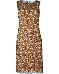 Linea Lace Corded Dress - Lyst