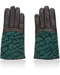 Nina Ricci - Croc-Detail Leather Gloves - Lyst