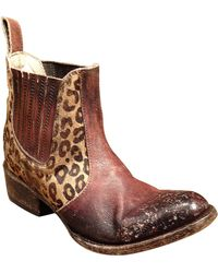Freebird by Steven - Bovine Leather And Hair Calf Ankle Boots - Lyst