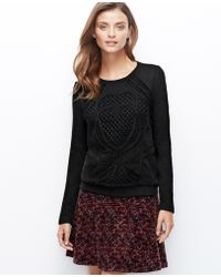 Ann Taylor Embroidered Lace Front Sweatshirt - Lyst