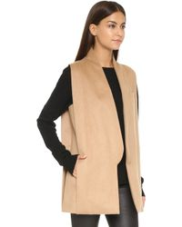 Ayr - The Copper Penguin Vest - Lyst