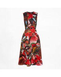 Erdem Mackenzie Dress Temae Leaf Red - Lyst