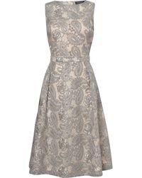 Pied a Terre   Jacquard Dress   Lyst