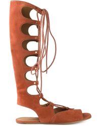 Chloé Knee High Gladiator Sandals - Orange