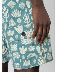 Mollusk Cacti Board Shorts - Blue