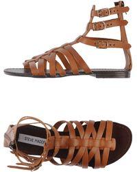 Steve Madden Brown Sandals - Lyst