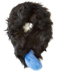Charlotte Simone Popsicle Raccoon And Fox-fur Scarf - Black